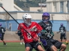 lax vs. skyline 03.jpg