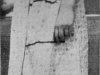 1928 A_Dress Up Day3.jpg