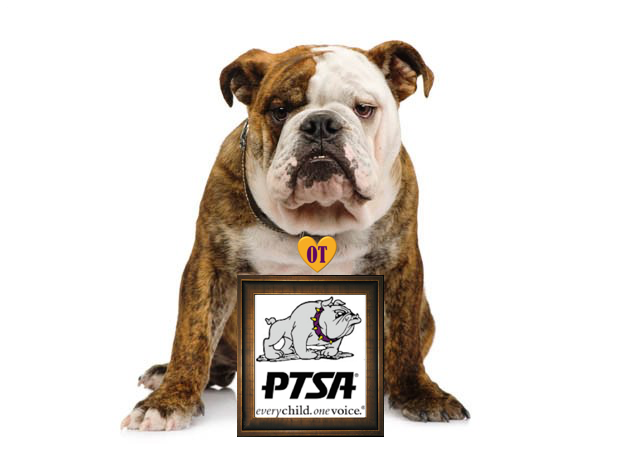 Bulldog with PTSA Pic