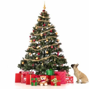 OT Baseball Christmas Tree Fundraiser Deadline to Order